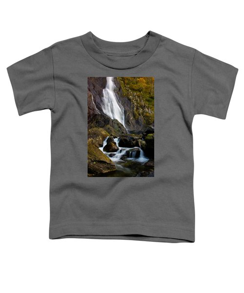 Aber Falls 2 Toddler T-Shirt