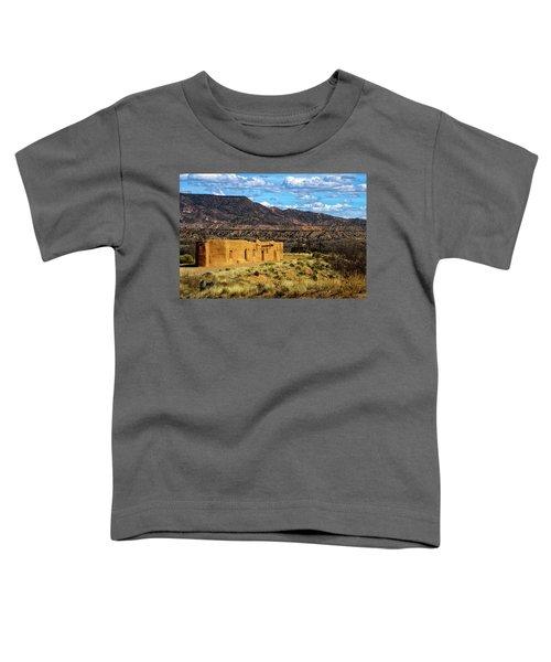 Abiquiu Church Toddler T-Shirt