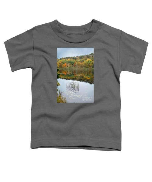 Acadia Autumn Toddler T-Shirt