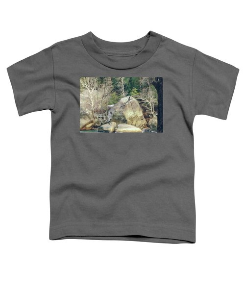 Across From Eagle Falls Toddler T-Shirt