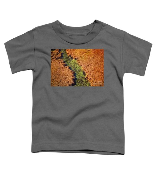 Aerial Farm Stream Lillies  Toddler T-Shirt