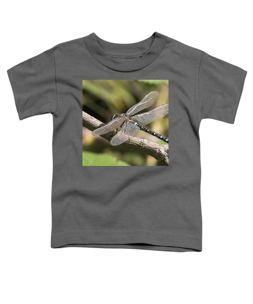 Aeshna Juncea - Common Hawker Taken At Toddler T-Shirt