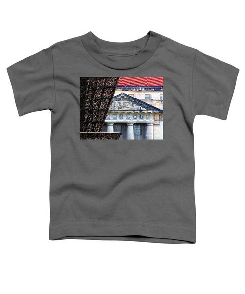 African American History And Culture 5 Toddler T-Shirt by Randall Weidner