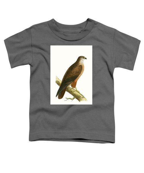 African Buzzard Toddler T-Shirt by English School