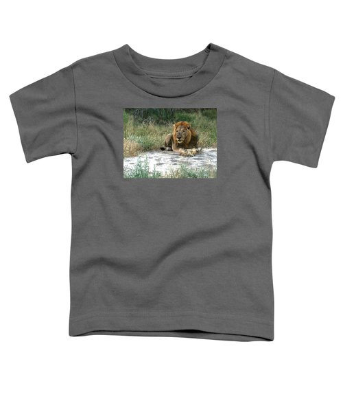 African Lion Toddler T-Shirt