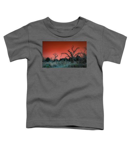 After The Hurricane Wars Toddler T-Shirt