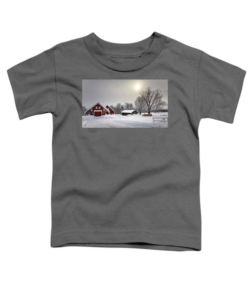 After The Snow Toddler T-Shirt