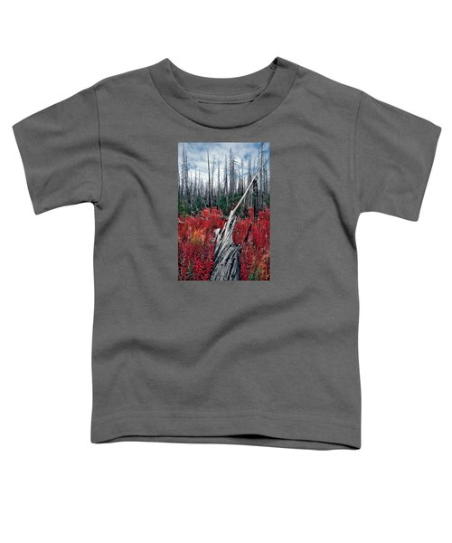 Afterburn Toddler T-Shirt