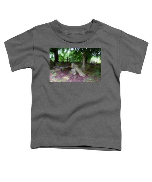 Afterlife Toddler T-Shirt