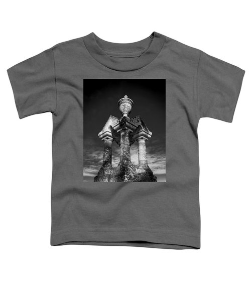 Aged Stone And Sky Toddler T-Shirt