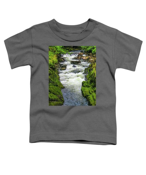 Alaskan Creek Toddler T-Shirt