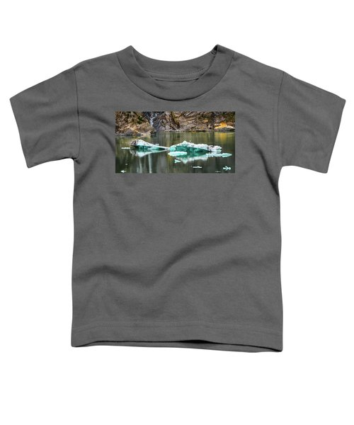 Alaskan Icebergs Toddler T-Shirt