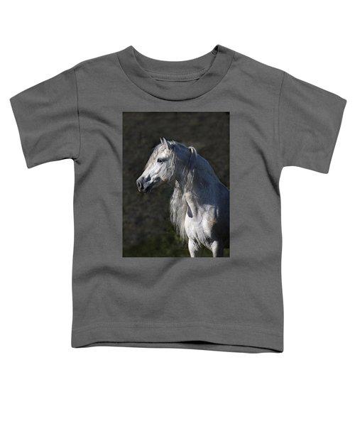 Alejandro Toddler T-Shirt
