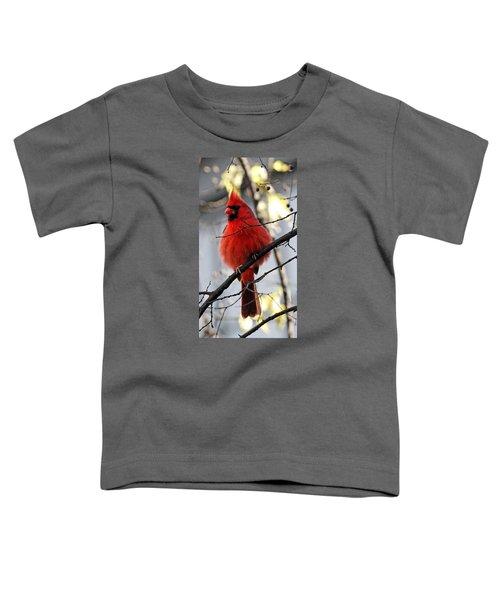 All Fluff Toddler T-Shirt