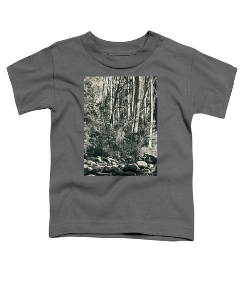 Toddler T-Shirt featuring the photograph All Was Tranquil by Linda Lees