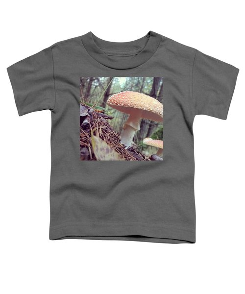Alle Unter Einem Hut.  #mushrooms Toddler T-Shirt