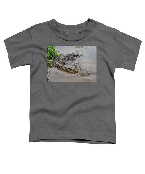 Alligators Courting Toddler T-Shirt