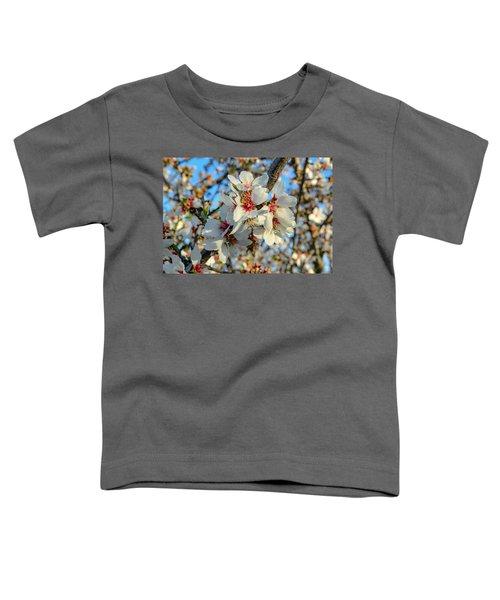 Almond Blossoms Toddler T-Shirt