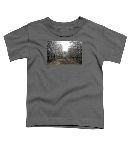 Toddler T-Shirt featuring the photograph Almonds Of Lachish by Dubi Roman