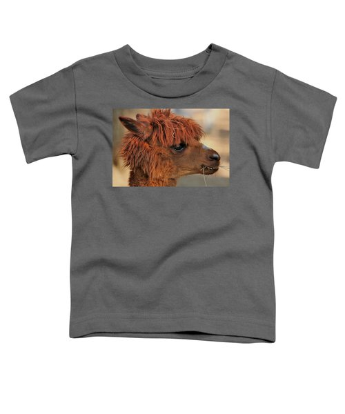 Alpaca Portrait Toddler T-Shirt