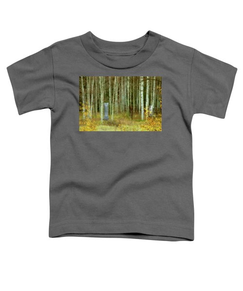 Alvarado Cemetery 41 Toddler T-Shirt