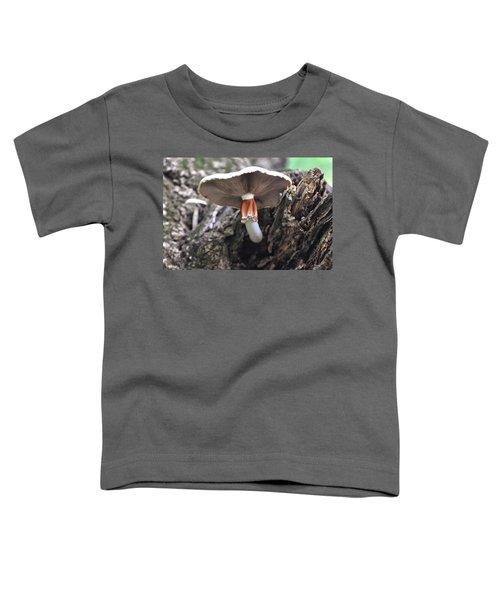 Amanita Toddler T-Shirt