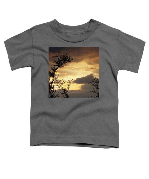 Amber Sky Toddler T-Shirt