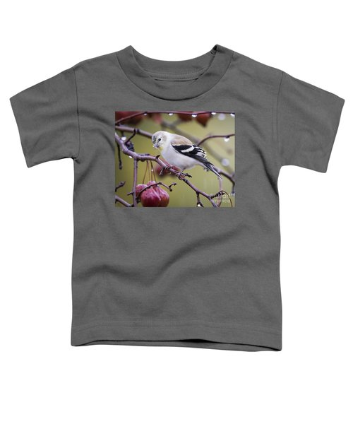 American Goldfinch In The Rain Toddler T-Shirt