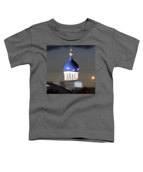 American History 24x24 Toddler T-Shirt