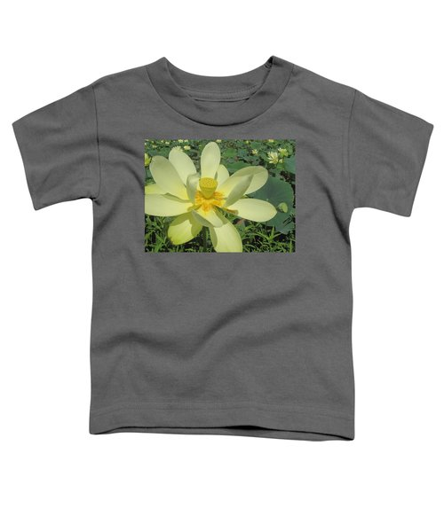 American Lotus Toddler T-Shirt