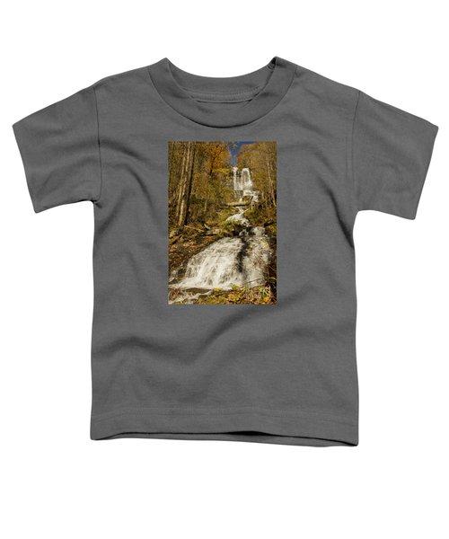 Amicola Falls Gushing Toddler T-Shirt
