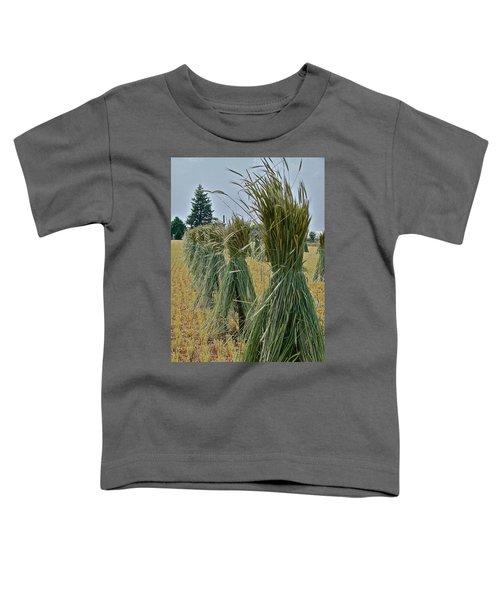 Amish Harvest Toddler T-Shirt