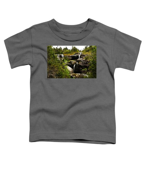 Ammonoosuc Falls Toddler T-Shirt