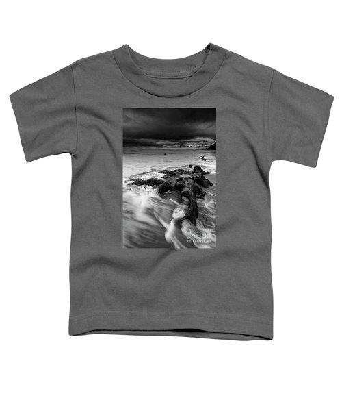 An Ancient Tree Stump Toddler T-Shirt