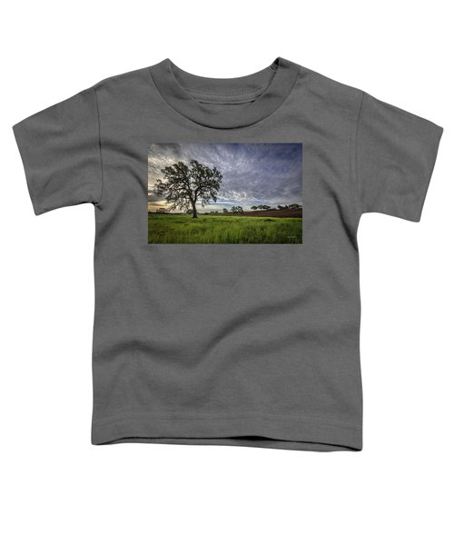 An April Sunday Morning Toddler T-Shirt