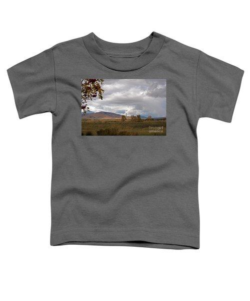 Anaconda Smelter Stack Toddler T-Shirt