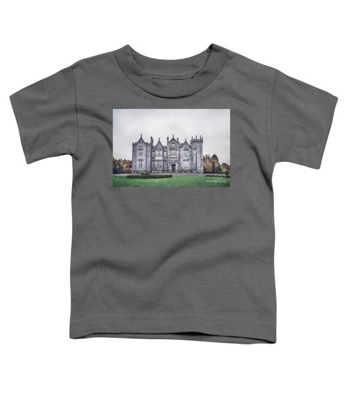Ancestral Echoes Toddler T-Shirt