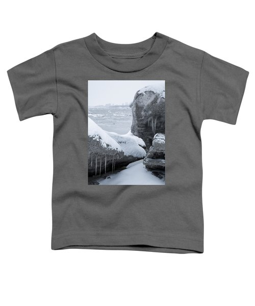 Anchorage In The Icebergs Toddler T-Shirt