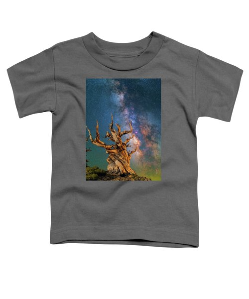 Ancient Beauty Toddler T-Shirt