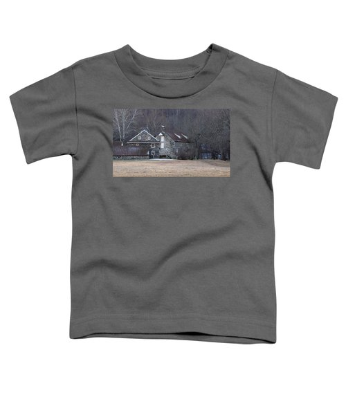 Andrew Wyeth Home Toddler T-Shirt