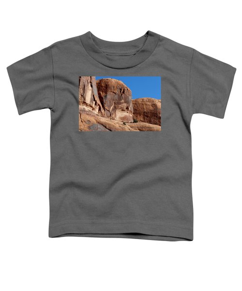 Angry Rock - 2  Toddler T-Shirt