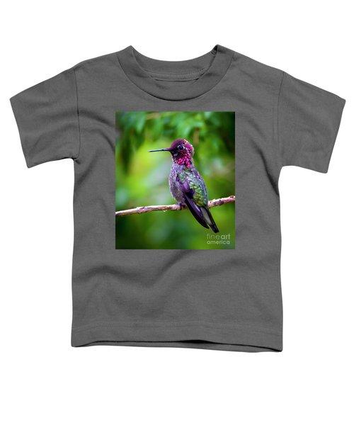 Anna Humming Bird Toddler T-Shirt