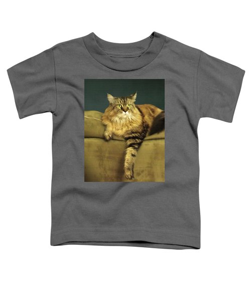 Annie Toddler T-Shirt