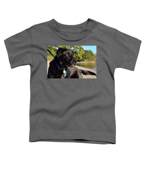 Apollo On The Beach Toddler T-Shirt