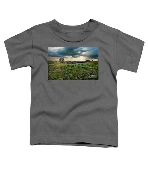 Approaching Forces Toddler T-Shirt