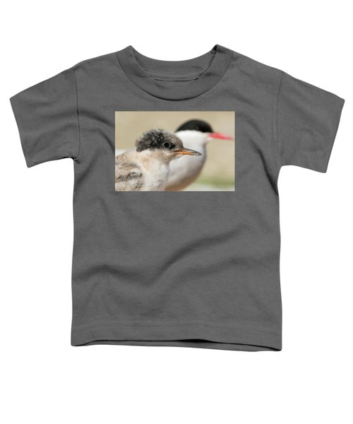 Arctic Tern Chick With Parent - Scotland Toddler T-Shirt