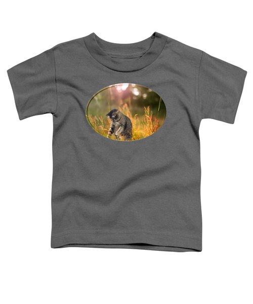 Play Day Toddler T-Shirt