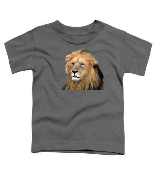 Masai Mara Lion Portrait    Toddler T-Shirt by Aidan Moran