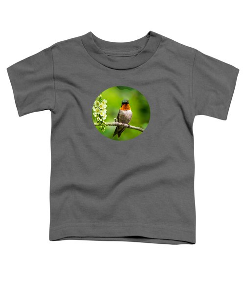 Male Ruby-throated Hummingbird With Showy Gorget Toddler T-Shirt by Christina Rollo