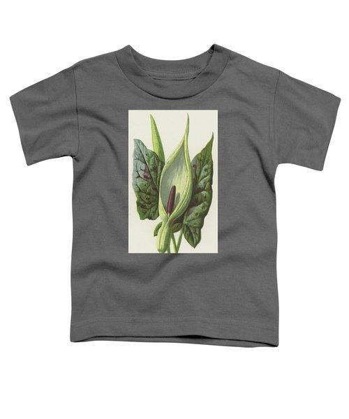 Arum, Cuckoo Pint Toddler T-Shirt